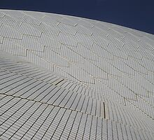 Sydney Opera House Abstract by mariondixon