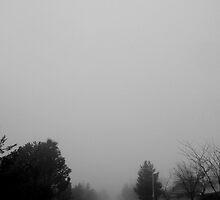 Fog by Monica G