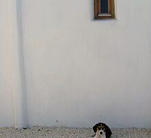 Cool in Paros by Glenn Watkins