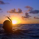 Sunset snorkel by jenitae
