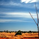 Our Vivid &amp; Colourful Outback  Vicki Ferrari Photography by Vicki Ferrari