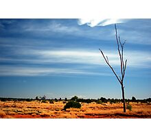 Our Vivid & Colourful Outback © Vicki Ferrari Photography Photographic Print