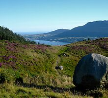 Carlingford Lough by NIEye