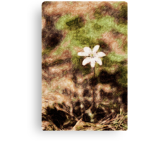 Endgraving Forest 14 Canvas Print
