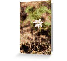 Endgraving Forest 14 Greeting Card