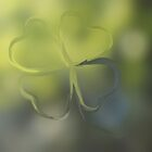 Happy St.Patrick Day by Nicole  Markmann Nelson