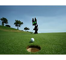 Cat Sinks A Putt Photographic Print