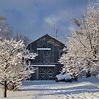 Winter Wonderland by Katie Clark