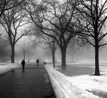 Foggy Day in Winter by Tracy Engle