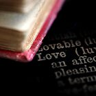 Love by Jane Marin