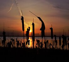 Cattail Sunset by geicherphoto