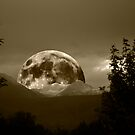SEPIA RISING MOON by Charlene Aycock IPA
