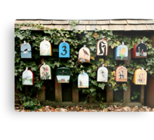 You've Got Mail....but where the heck is it? Metal Print