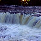 Aysgarth Falls #4 by Trevor Kersley
