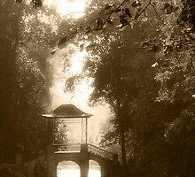 Old park by Mny-Jhee