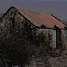 Old Irish Shed by Avril Brand