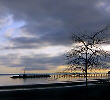White Rock Pier by DragonflyPrints