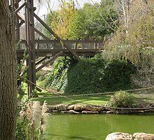 Bridge at the Biblical Zoo of Jerusalem by Sarah  Levinson
