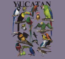 Birds of the Yucatan by Ken Gilliland