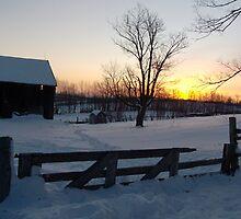 Bethany Hills Ontario Canada by Les Wazny