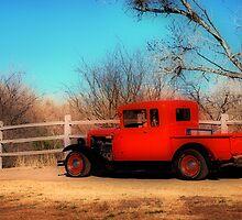 Vintage Truck by Barbara Manis