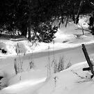 Duffins Creek in Winter by Larry Llewellyn