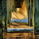 Under the Pier by Barbara  Brown