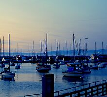 AN EVENING WALK ON THE MONTEREY HARBOR WARF by davesdigis