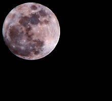 Sonora Moon by Steve Cozart