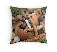 musrooms (Boletus scaber, aurantiacus, edulis).  Throw Pillow