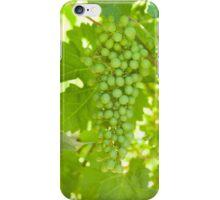 Green Shiraz iPhone Case/Skin
