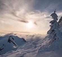 Frozen by Marcel Ilie