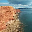 Devon: Red sandstone cliffs by Rob Parsons