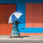Umbrella  by David Reid