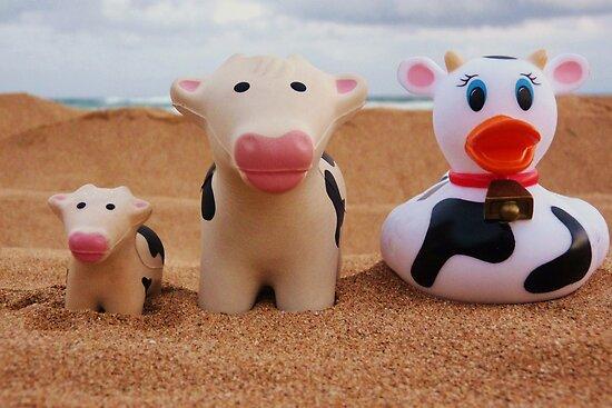 Cow Wannabe by Diana Forgione