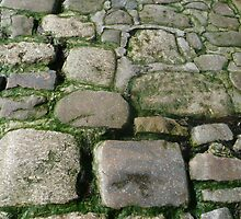 cobblestones by bubblehex08