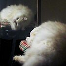 Mirror Image by trisha22