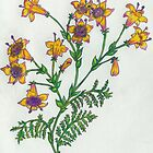 Botanical Print of Wild Ganazi'buzim by Starshadow