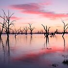 Lake Victoria Dawn, Australia by Michael Boniwell