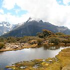 Routeburn Track by seadworf