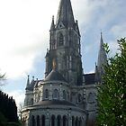 St Finbars Cathedral Cork by David O'Riordan