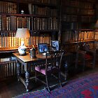 The Library by relayer51