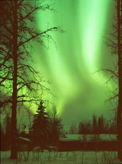 Aurora Borealis, Central Alaska by Virginia Maguire