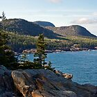 Cadillac Mountain - Acadia National Park by Stephen Beattie