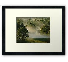 """Sunshine & Mist"" Framed Print"