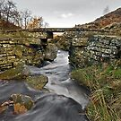 Brontë Bridge by Steve  Liptrot
