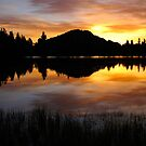 Sprague Lake Sunrise Reflections by Stephen Vecchiotti