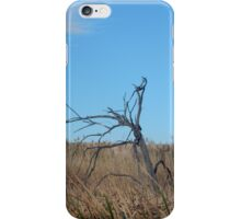 Dead Wood in the Weeds iPhone Case/Skin