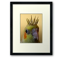 cockatiel portrait (spikee) Framed Print