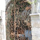 Delicate Doorway Gate Scrollwork by Pat Yager
